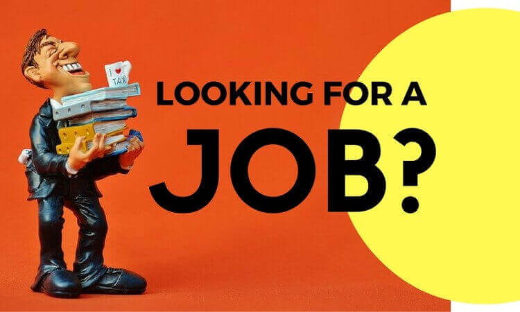 blog-lookingforjob_img